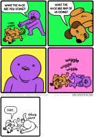 Koiruuksia