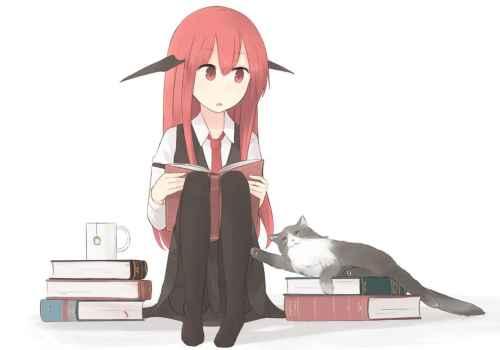 Koa lukemassa ja kissa