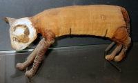 Tämä tappoi Tutankhamonin kissan