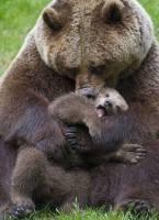 Iloista äitien päivää