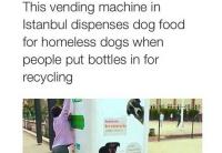 Ruoka-automaatti katukoirille