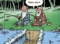 Mooses, kusipäähomo