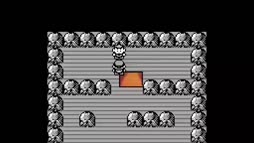 Pokemon taistelu