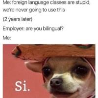 Kielten opiskelu kannattaa aina