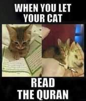 Allah kisse