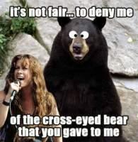 Killisilmäinen karhu