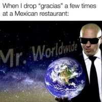 Mr. Worldwide