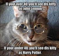 John Lennon/Harry Potter