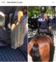 Ratsupoliisin aseistus