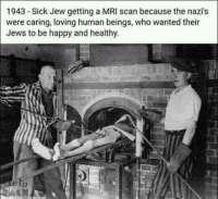 Avulias natsi