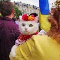 Ukraina - börheä asia