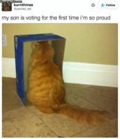 Äänestäjä