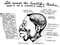 Neekerin aivot