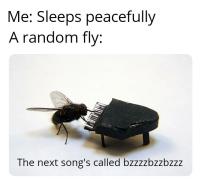 Soitan sinulle kansanlauluni