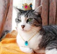 Kuningatar Börh I