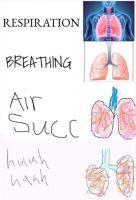 air SUCC
