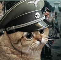 Kommandant Katze