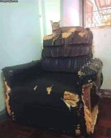 Mun sohva >:3