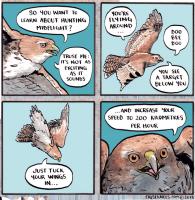 Metsästysvinkki