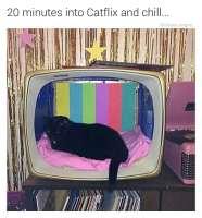 Kerrankin telkkarista tulee jotain mielenkiintoista :3
