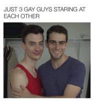 Kolme homoa