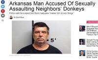 Hupsut rikolliset rikollistelee