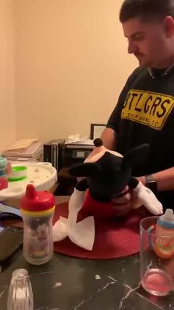 Oppivainen lapsi