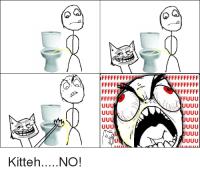kissa mukana