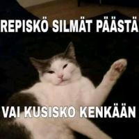 Kissakuva