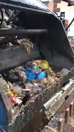 Mikäs se siellä sätkii?