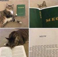 Jännä kirja