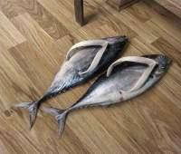 kalamiehen läpsykät