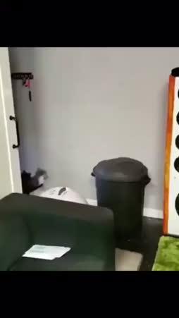kissataivas