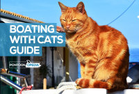 Boating With Cats Guide