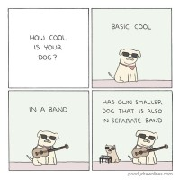 How cool is your dog?