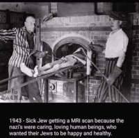 Totuus natseista
