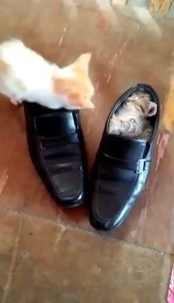 kengät hyvään käyttöön