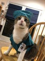 Sairaanhoitaja börh