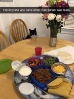 Ruoka on pöydässä