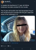 Ruotsi case