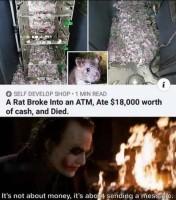 todellinen rottailija