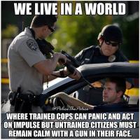 Usan poliisi