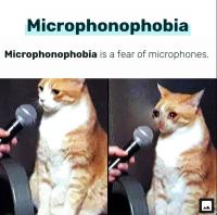 Microphonophobia