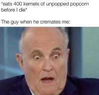 Popkornia