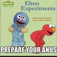 Elmo koittaa