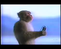 oon tää apina