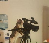 Videokuvaaja :3