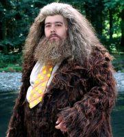 Hagrid22
