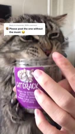 Cat crack