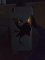 iPhonen selkä